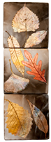Falling Leaves No.7